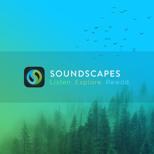 Soundscapes Mobile Application